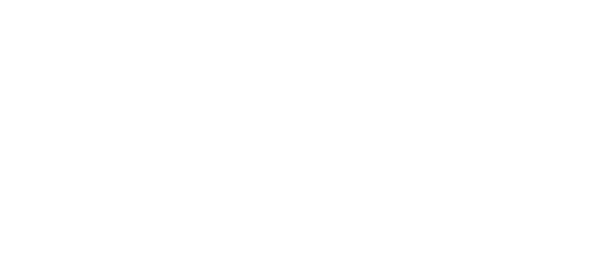 JCI 't Nieuwe Diep